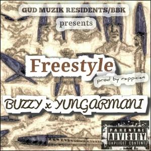 freestle cover